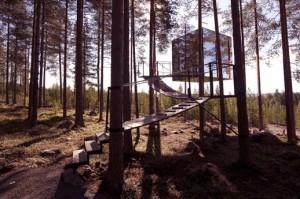 Habitaciones construidas en los árboles. Tree Hotel Mirror Cube