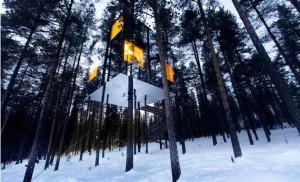 el_tree_hotel_6237_570x
